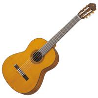 Acoustic Guitar Deals