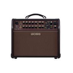 Boss 60 Watt Acoustic Singer Live Combo