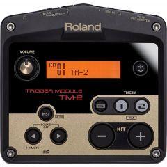 Roland TM2